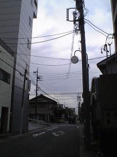 20060208.JPG