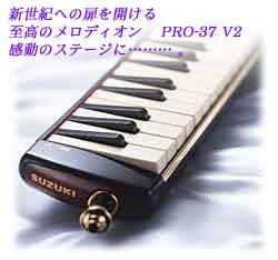pro37-2.jpeg